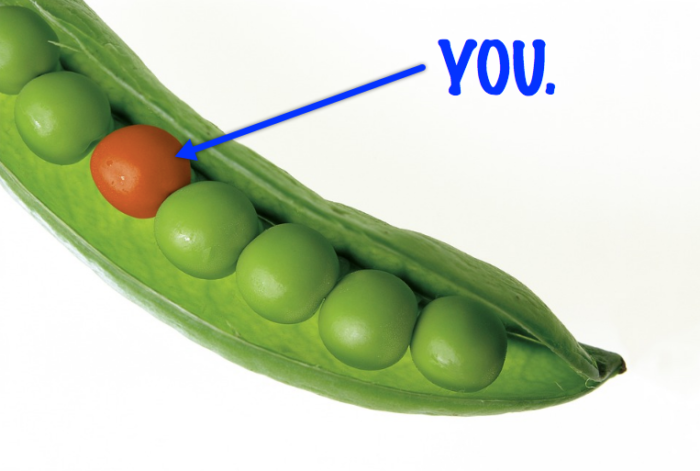 Want to attract more prospects? Be different.